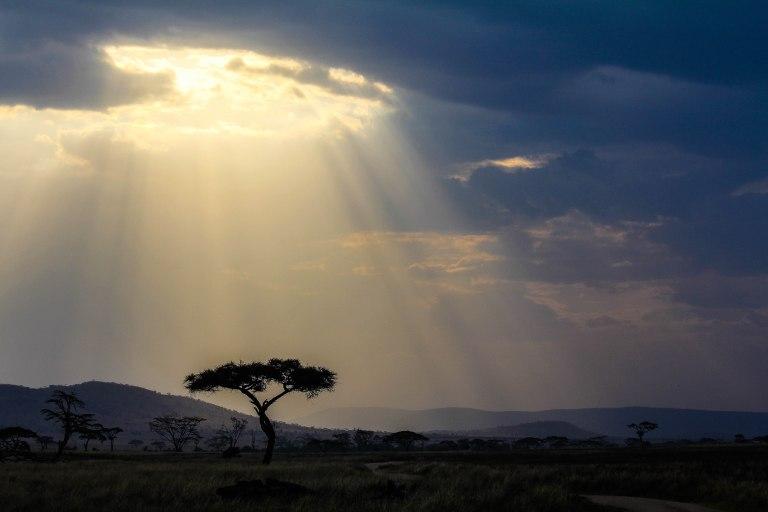 Serengeti, Arusha, Tanzania – 18:31; 26 September, 2015 Canon EOS 60D Canon EF-S 18-55mm f/3.5-5.6 IS